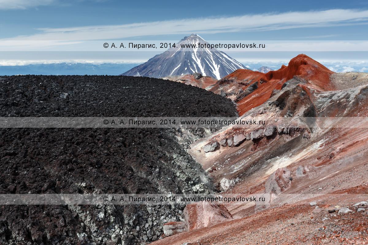 Красивый вулканический пейзаж — вид на кратер Авачинской сопки (Avachinskaya Sopka) на Камчатке