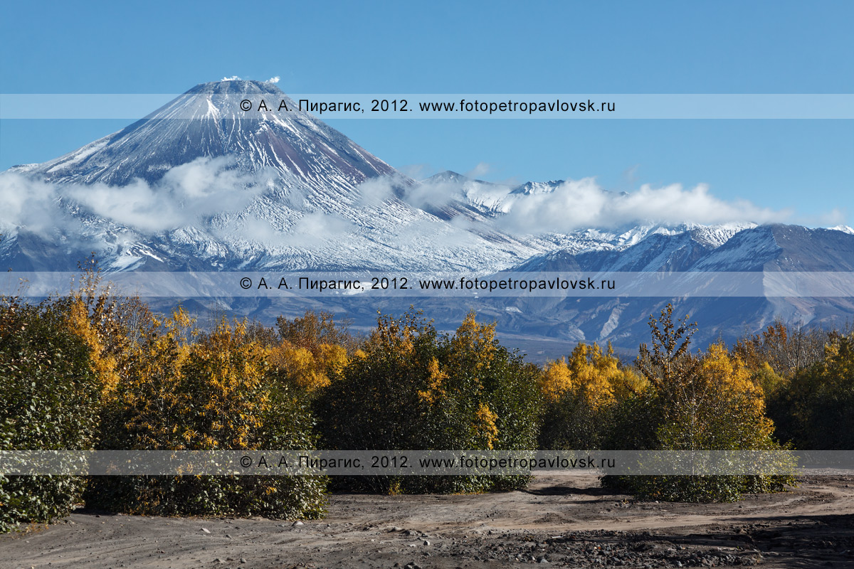 Осенний пейзаж полуострова Камчатка — вид на действующий Авачинский вулкан (Avachinsky Volcano) с русла реки Сухая Елизовская