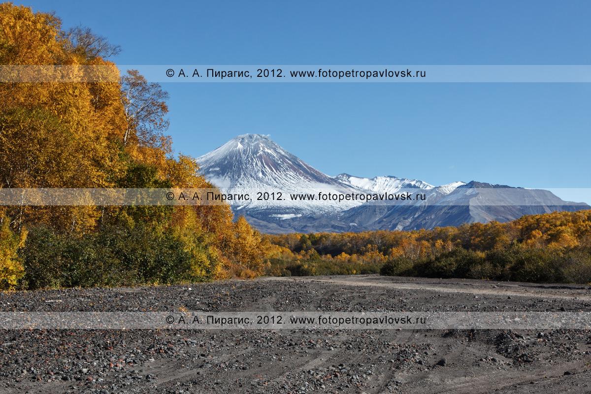 Осенний вид на вулкан Авачинский (Avachinsky Volcano) с русла реки Сухая Елизовская. Полуостров Камчатка