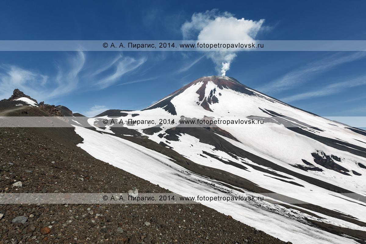 Камчатская дымящаяся гора — вид на Молодой конус Авачинского вулкана (Avacha Volcano) и фумарольную активность — парогазовые струи на вершине вулкана. Камчатка