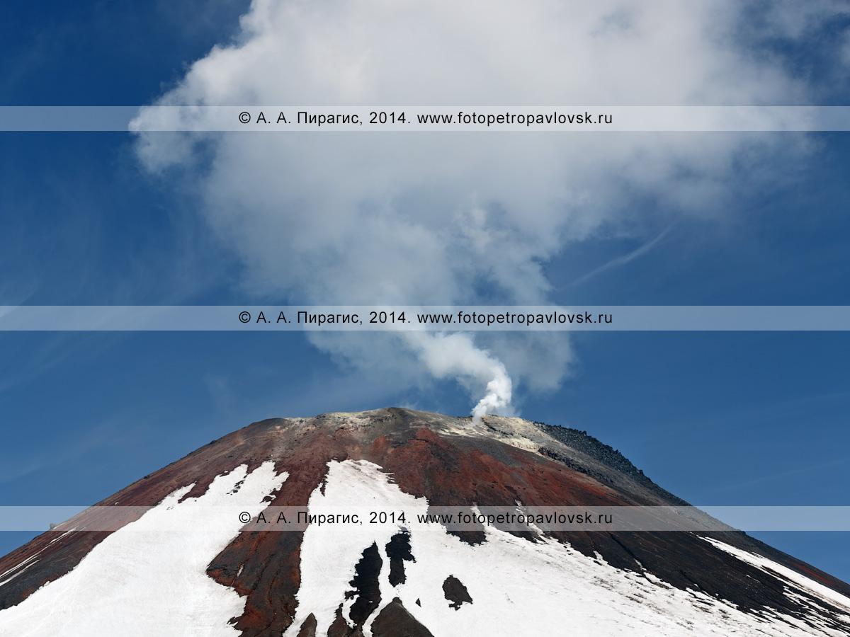 Вулканический пейзаж Камчатки — вершина Авачинского вулкана (Avachinsky Volcano), вид на работу фумарол действующего вулкана — выделения горячего вулканического газа в виде струй и спокойно парящих масс из трещин и каналов, расположенных в кратере камчатского вулкана