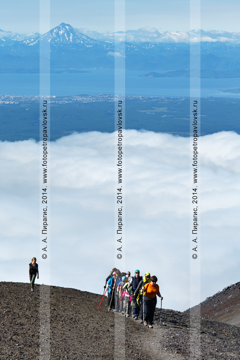 Фотография: группа туристов и путешественников совершает восхождение на Авачинский вулкан на полуострове Камчатка