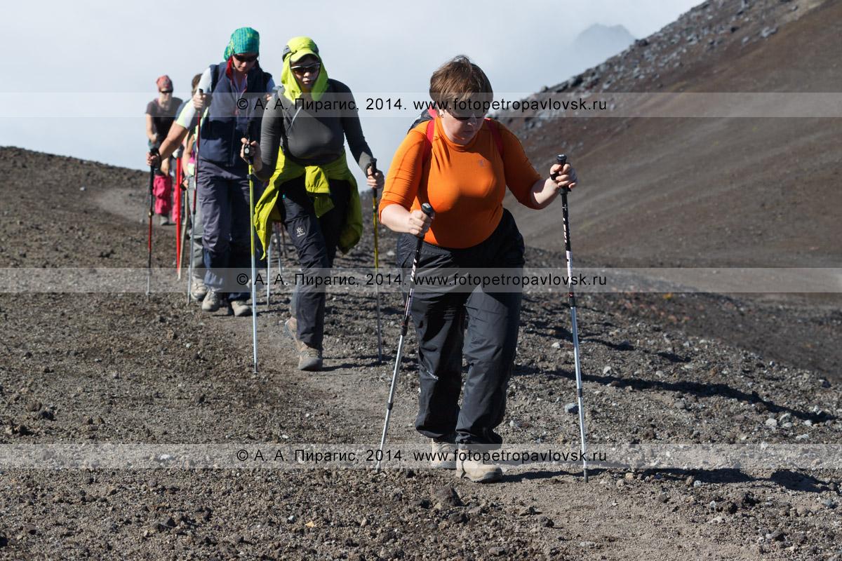 Фотография: туристическая группа идет по тропинке на вершину Авачинского вулкана на Камчатке