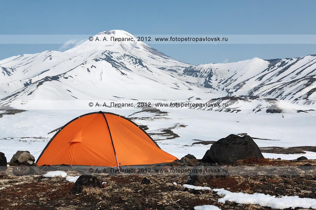 Фотография: оранжевая туристическая палатка стоит у подножия Авачинского вулкана (Avacha Volcano) на полуострове Камчатка