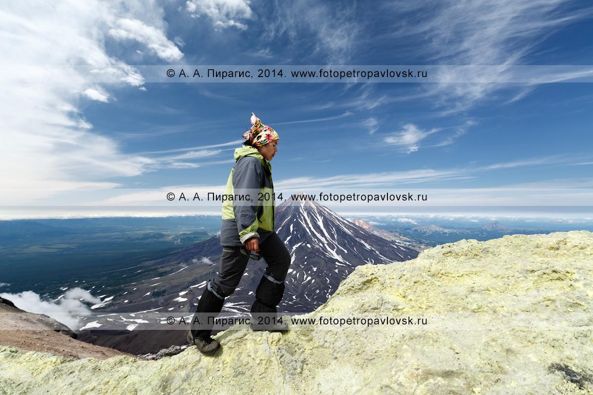 Фотография: пеший туризм на полуострове Камчатка — девушка-туристка идет по кромке кратера Авачинского вулкана на фоне Корякского вулкана