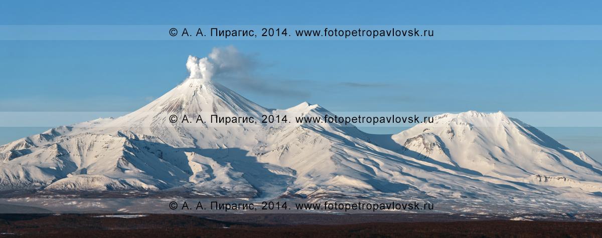 Фотография: вулкан Авачинский и вулкан Козельский на Камчатке. На снимке видна мощная фумарольная деятельность Авачинского вулкана — выбросы пара и газа из фумарол в кратере вулкана