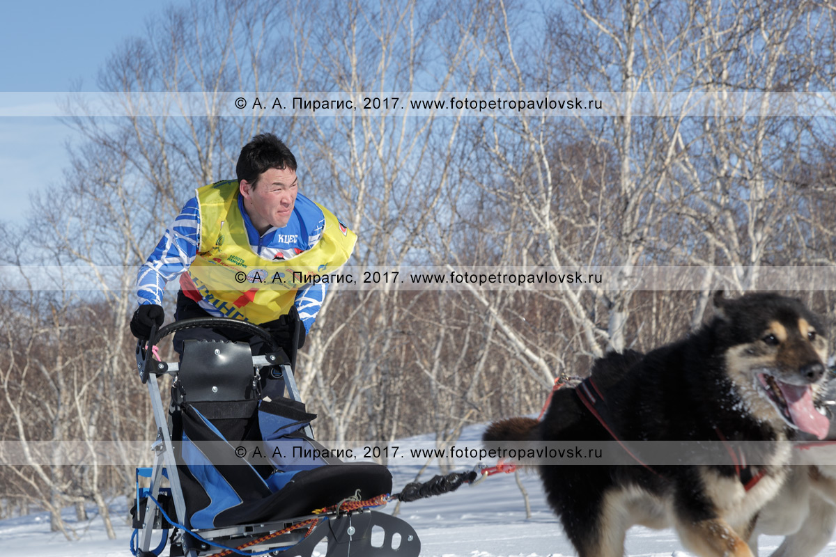 Фотография: каюр Виталий Тишкин — камчатский спортсмен из села Эссо Быстринского района Камчатского края