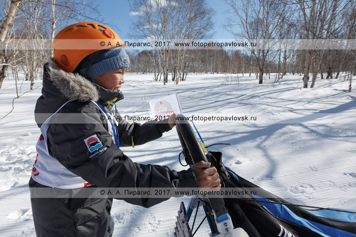 Фотография: камчатский каюр Глеб Нестеров, камчатская детская гонка на собачьих упряжках «Дюлин» («Берингия»)