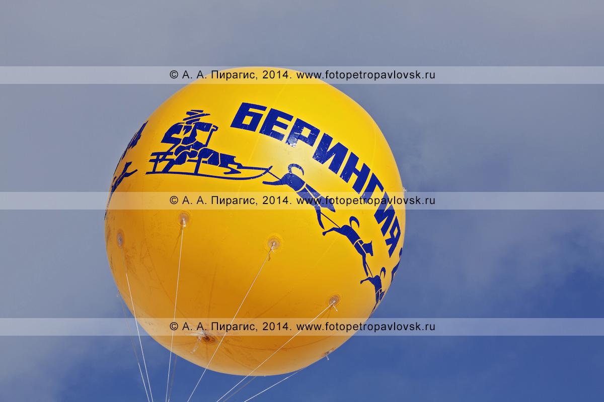"""Фотография: воздушный шар в небе с надписью """"Берингия"""", эмблемой (логотип) традиционной камчатской гонки на собачьих упряжках """"Берингия"""". Камчатка"""