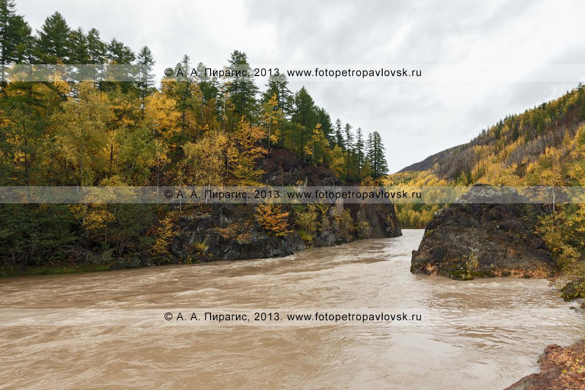 Фотография: река Быстрая (Эссовская), живописный осенний вид на камчатскую горную реку. Камчатский край, Быстринский район