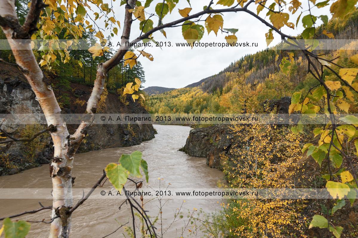 Фотография: осенний вид на камчатскую горную реку Быструю (Эссовскую). Камчатка, Быстринский район Камчатского края