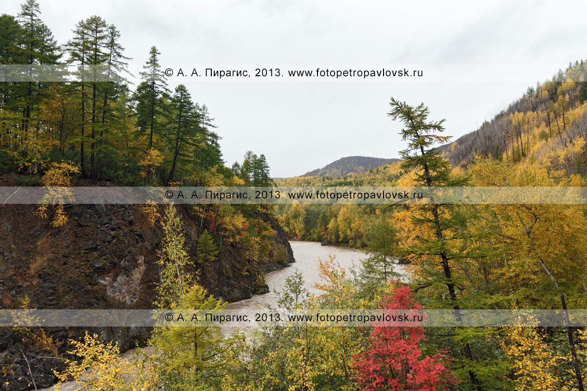 Фотография: осенний камчатский пейзаж — живописный вид на горную реку Быструю (Эссовскую). Полуостров Камчатка