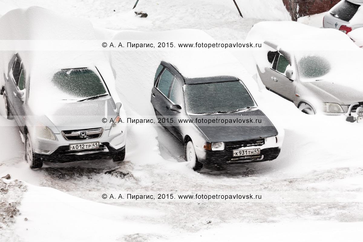 Личный автотранспорт жителей Петропавловска-Камчатского, занесенный снегом во время мощного снежного циклона (метели, пурги) в столице Камчатского края