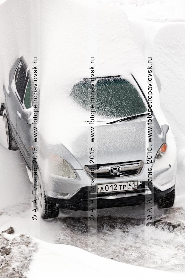 Автомобиль, занесенный снегом во время сильной пурги (метели) в городе Петропавловске-Камчатском
