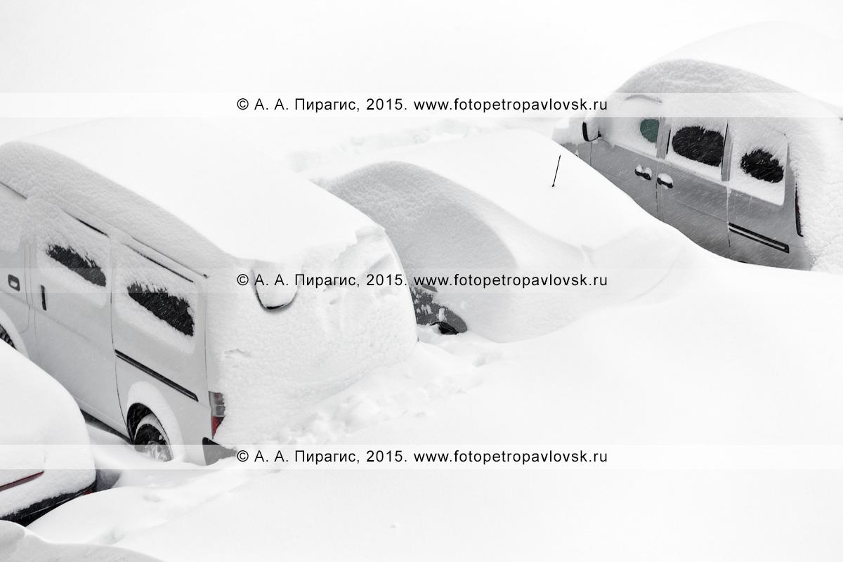 Микроавтобусы и легковые автомобили занесенные, снегом во время снежного циклона (пурги, метели) в городе Петропавловске-Камчатском. Полуостров Камчатка