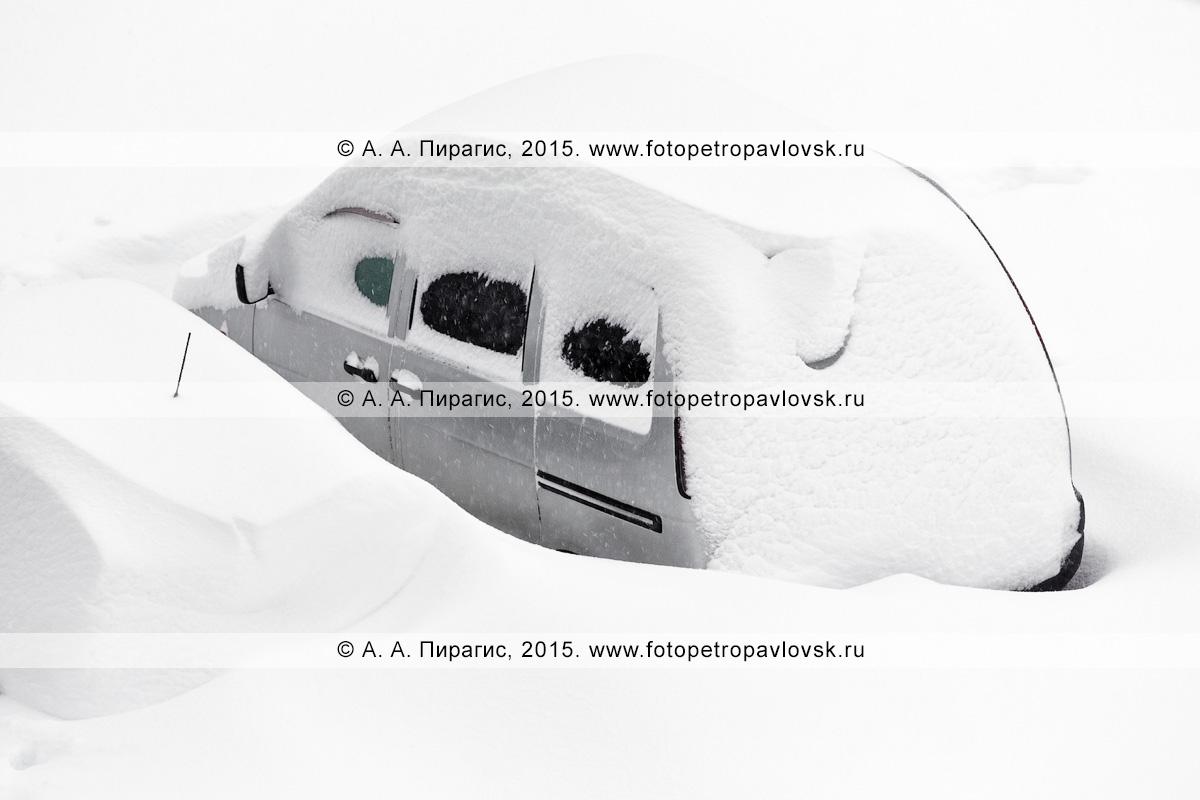 Легковушка и микроавтобус, занесенные снегом во время сильного снежного циклона (метели, пурги) в столице Камчатского края — городе Петропавловске-Камчатском