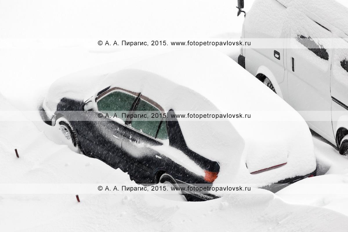 Легковой автомобиль, занесенный снегом во время пурги (метели) в Петропавловске-Камчатском (Камчатский край)