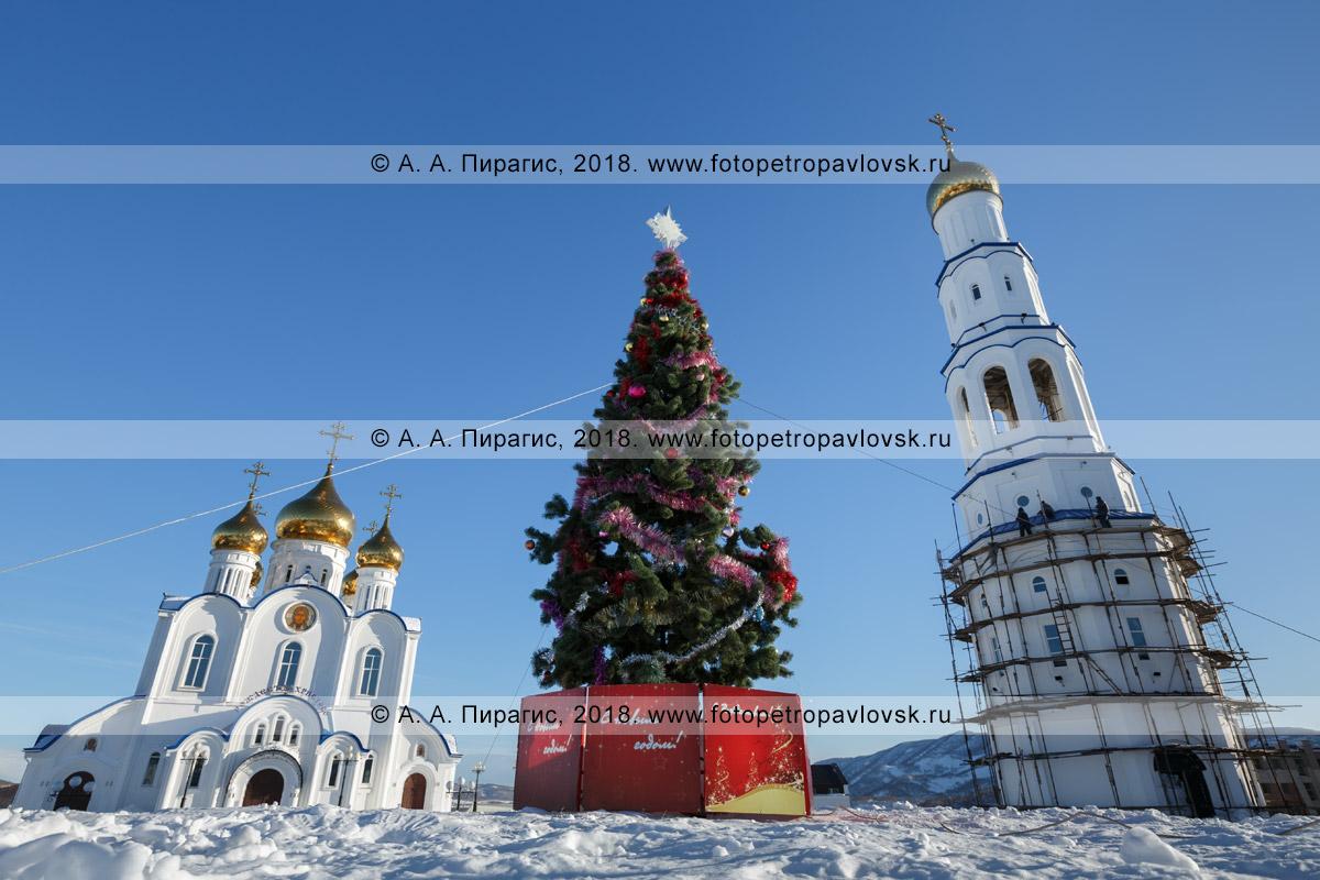 Фотография: праздничная рождественская елка, здание кафедрального собора во имя Святой Живоначальной Троицы и строящаяся соборная колокольня. Камчатский край, город Петропавловск-Камчатский