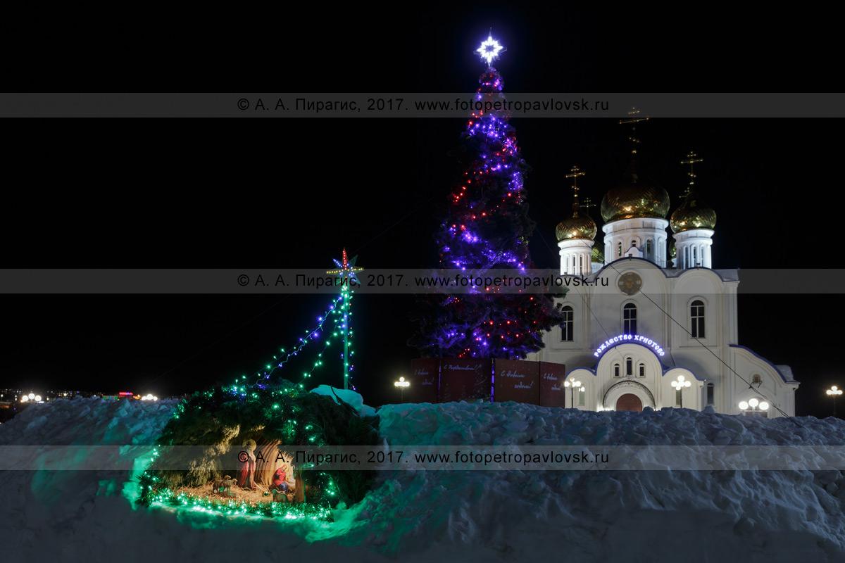 Фотография: ночной вид на рождественский вертеп, праздничную рождественскую елку и кафедральный собор во имя Святой Живоначальной Троицы в городе Петропавловске-Камчатском