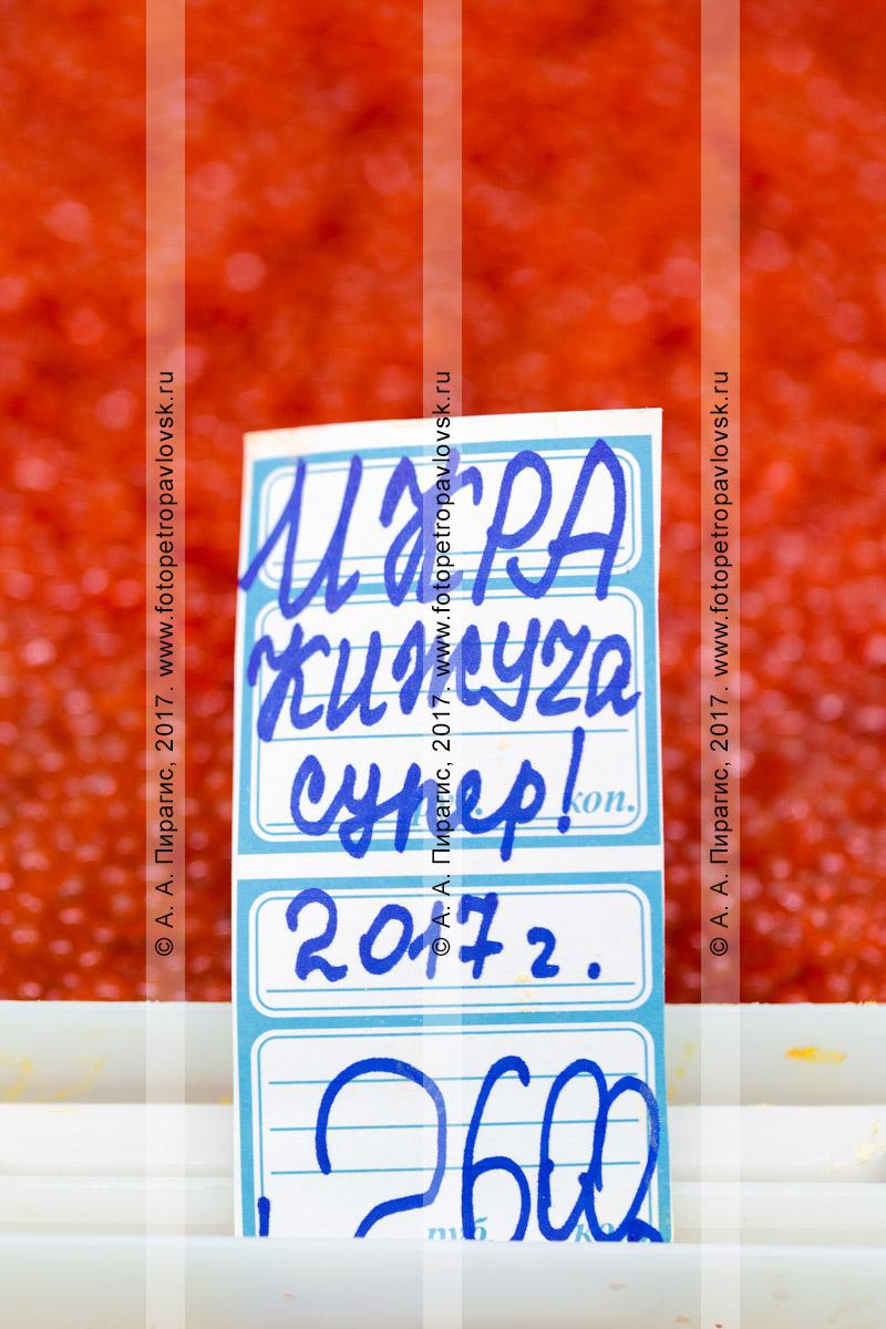 Фотография: цена соленой красной икры из кижуча (тихоокеанский лосось) — 2600 рублей за килограмм