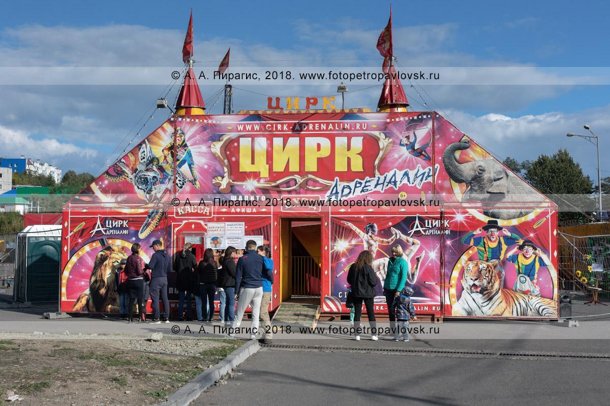 Фотография: шатер цирка шапито «Адреналин», очередь зрителей в кассу цирка. Камчатский край, город Петропавловск-Камчатский