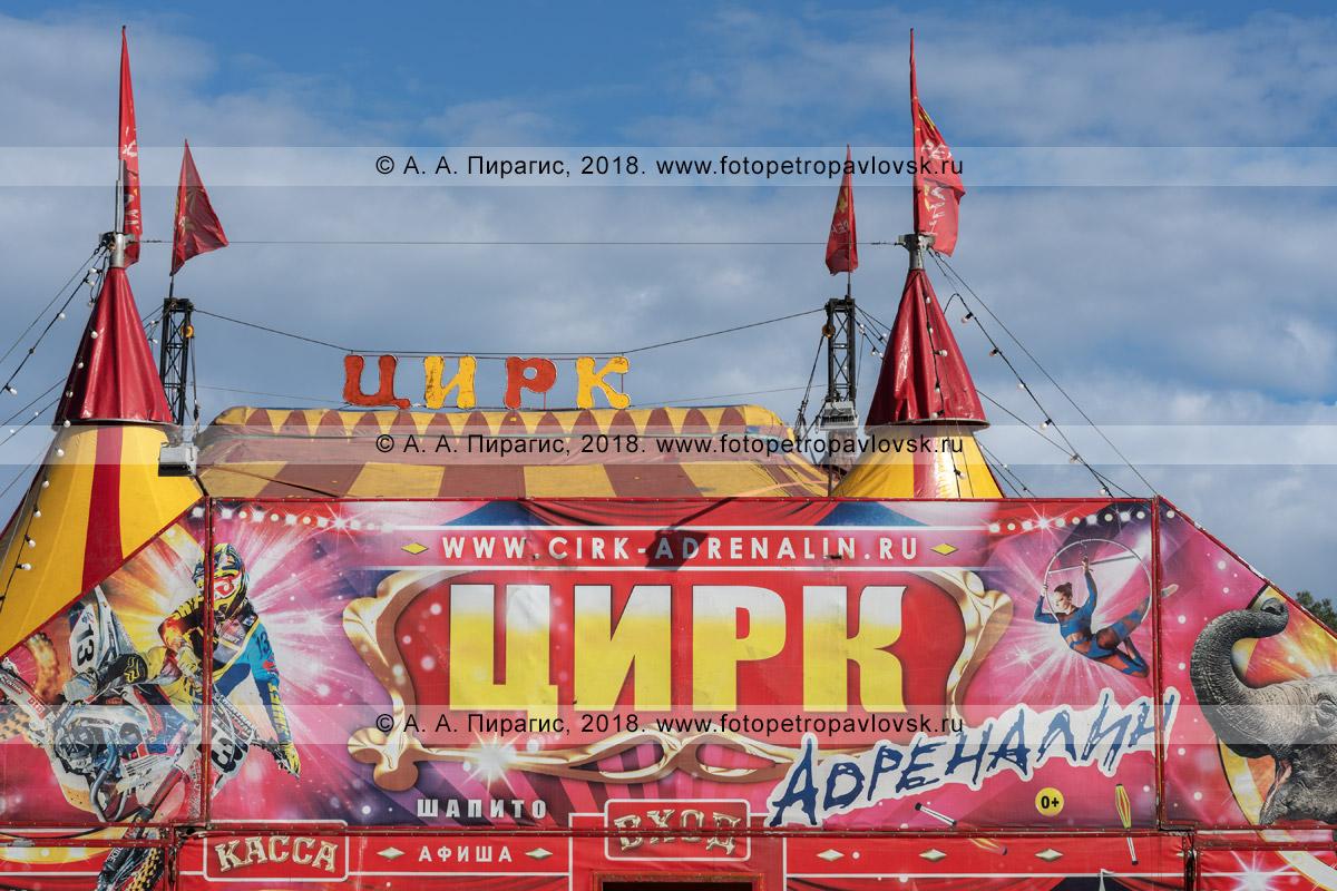 Фотография: шатер цирка шапито «Адреналин»