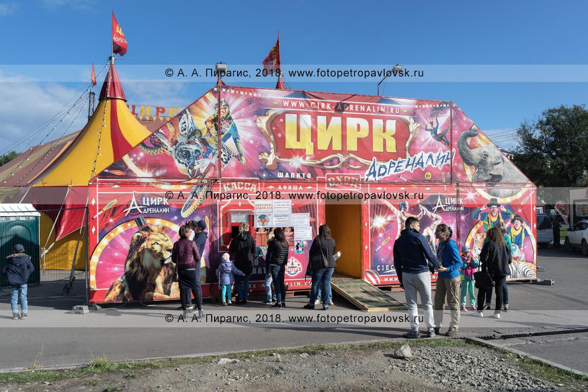 Фотография: шатер цирка шапито «Адреналин», зрители стоят в очереди за билетами в цирк. Полуостров Камчатка, город Петропавловск-Камчатский