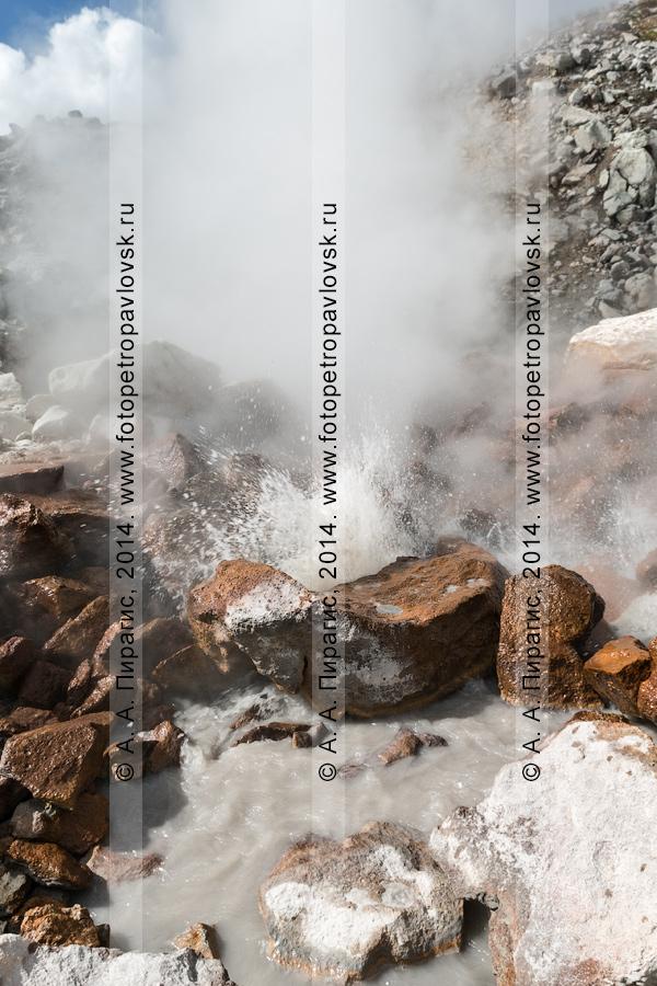 Фотография: фумарольная деятельность камчатского вулкана Дзензур (Dzenzur Volcano) в виде фумарол и грязеводяного котла. Камчатка, Дзензур-Жупановская группа вулканов