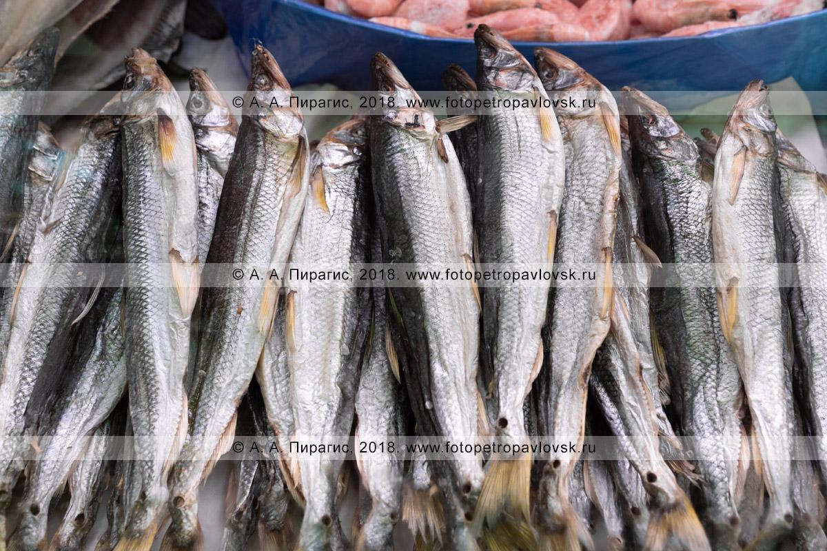 Фотография: соленая вяленая рыба корюшка на торговом прилавке рыбного рынка в городе Петропавловске-Камчатском