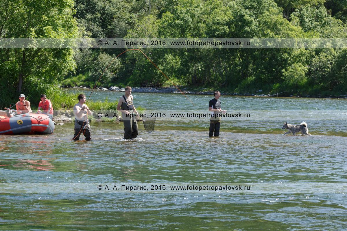 Фотография: рыбаки ловят рыбу лососевых пород во время рафтинга по горной реке Быстрой на полуострове Камчатка