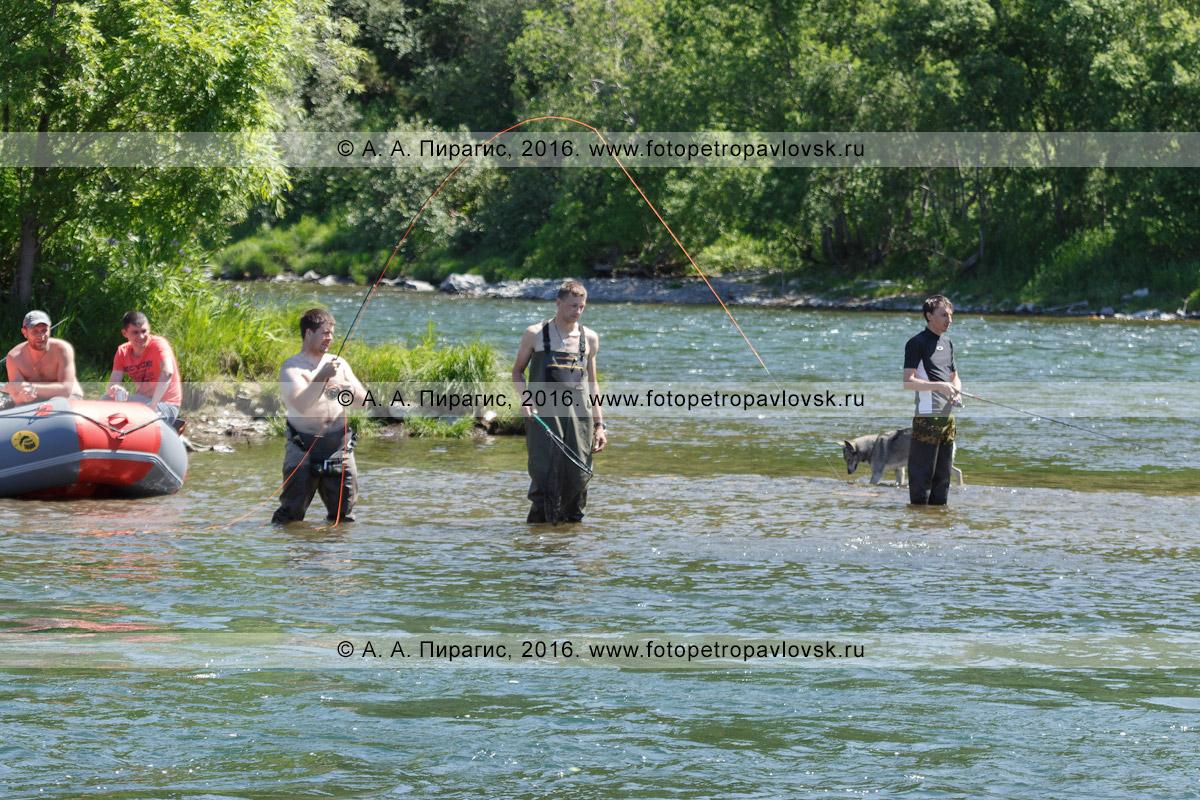 Фотография: туристы рыбачат нахлыстом микижу, или радужную форель, в горной речке во время летнего многодневного сплава на рафте