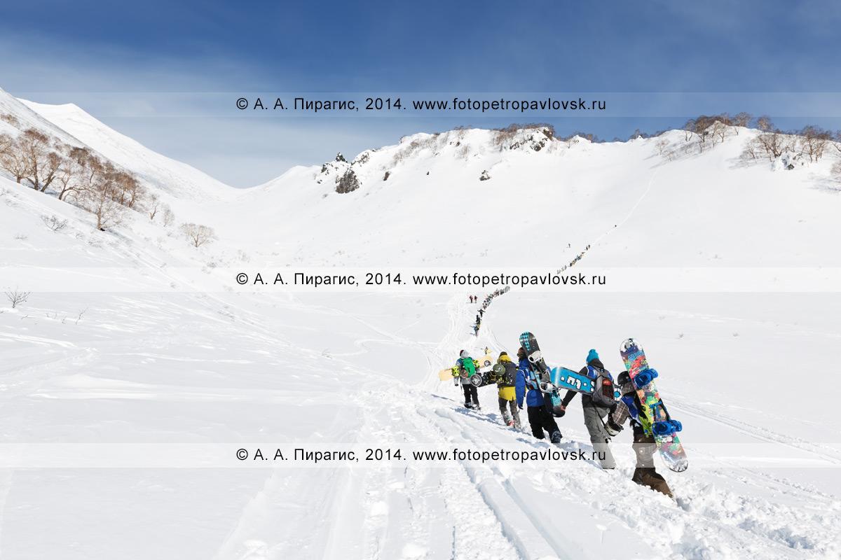 Фотография: камчатские спортсмены — сноубордисты и горнолыжники поднимаются на гору для фрирайда. Полуостров Камчатка