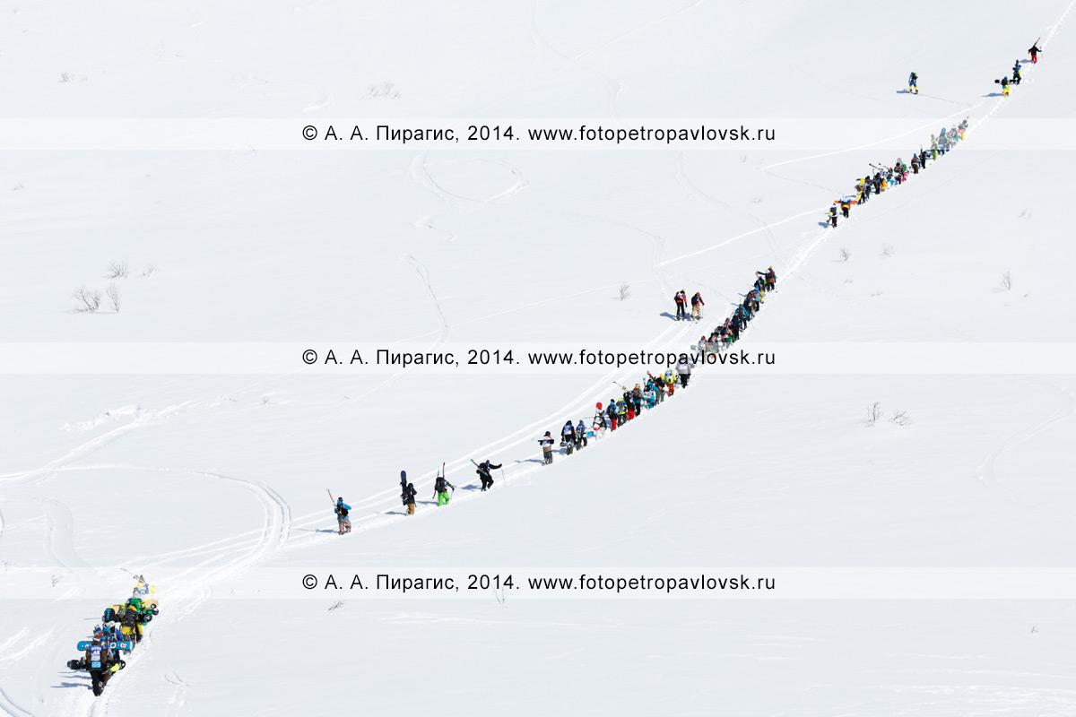 Фотография: подъем на вершину горы большой группы камчатских спортсменов — сноубордистов и горнолыжников для фрирайда. Полуостров Камчатка