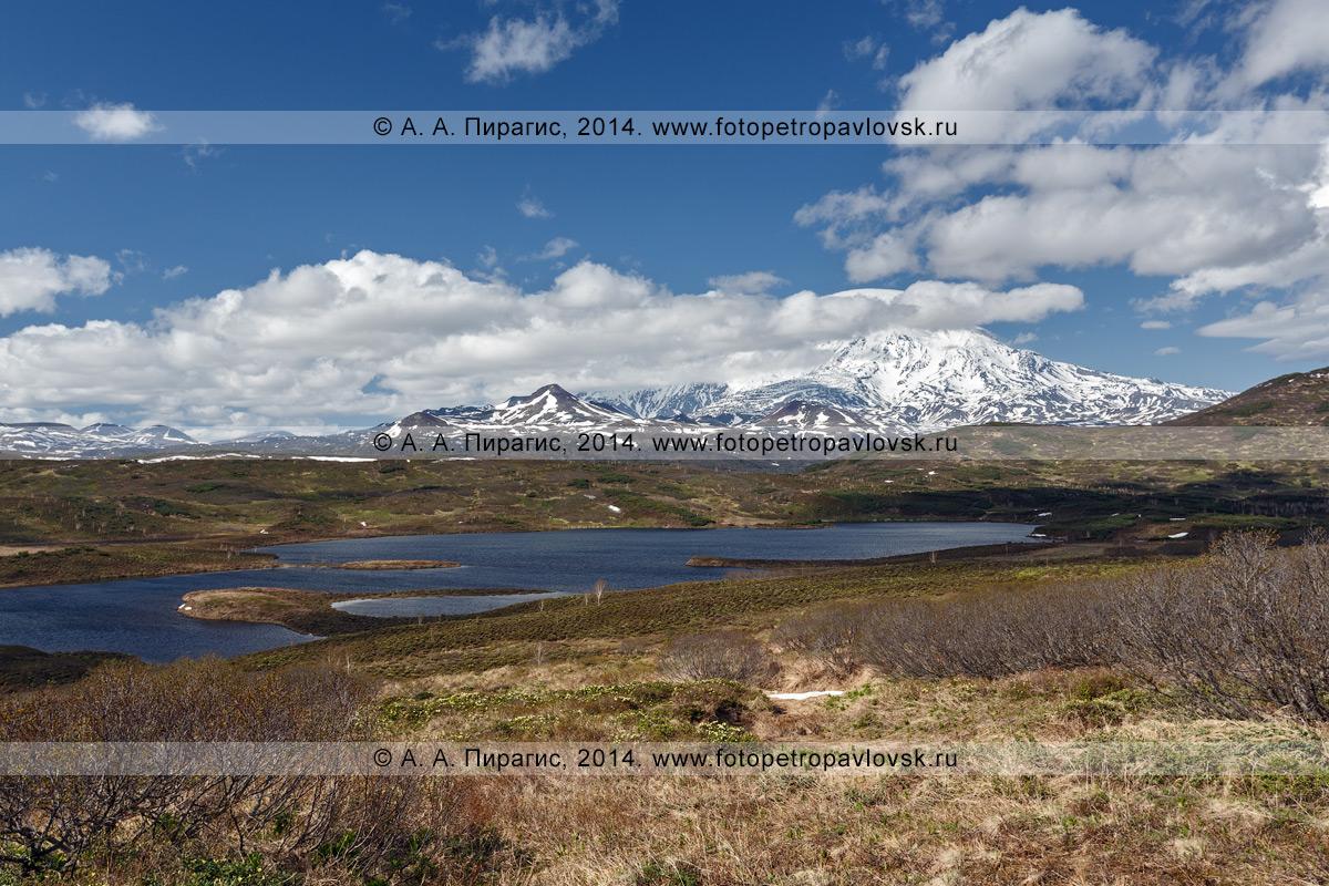 Фотография: Ичинский вулкан (Ichinsky Volcano) и озеро Тымкыгытгын. Камчатка, Срединный хребет