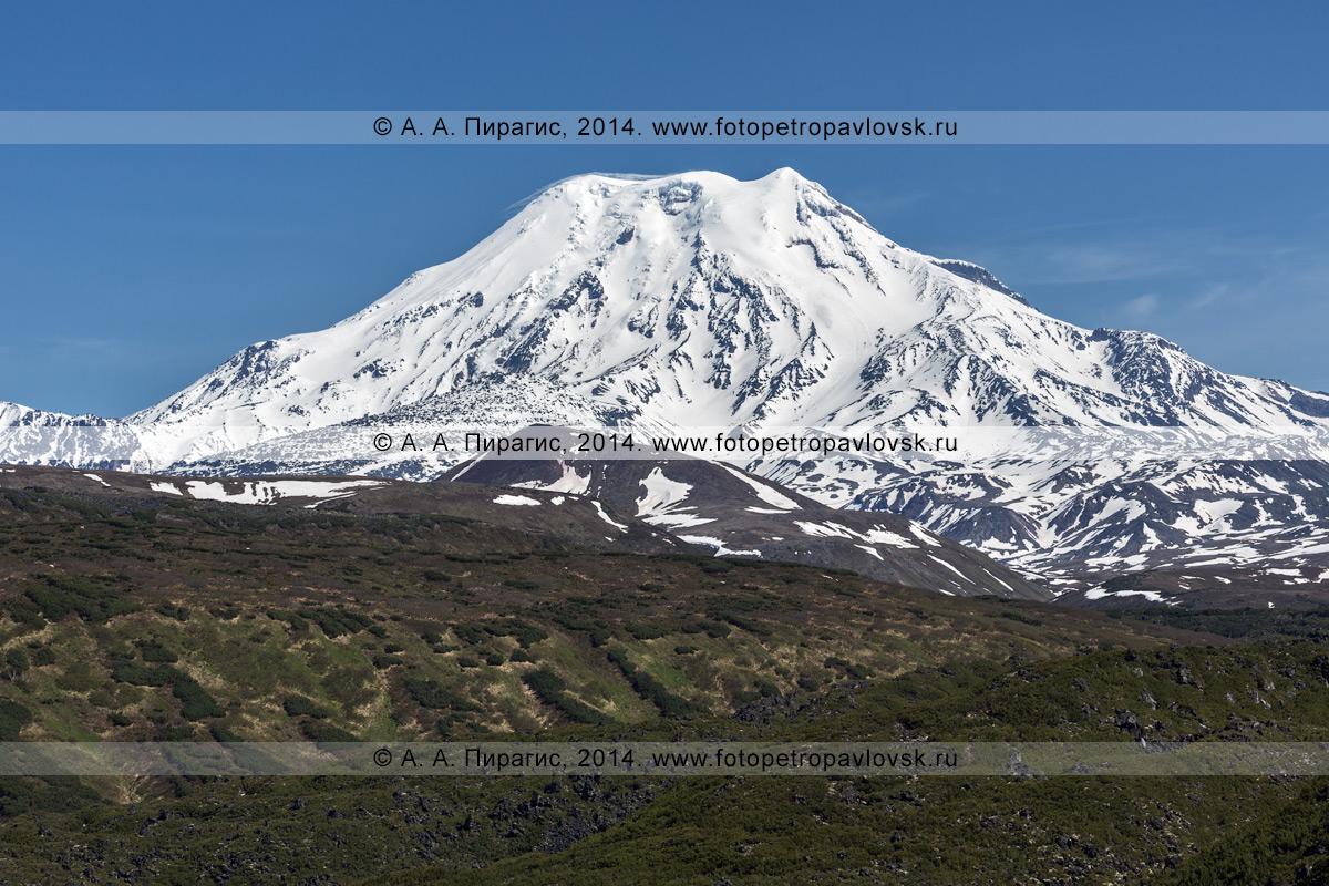 Фотография: действующий вулкан Ичинская сопка (Ichinskaya Sopka). Срединный хребет на Камчатке