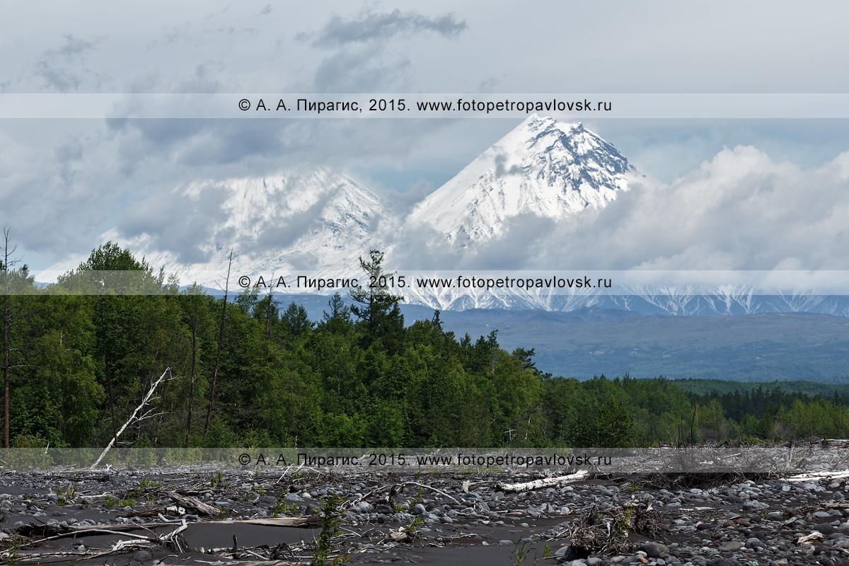 Фотография: вид на вулкан Ключевской (в облаках) и вулкан Камень. Ключевская группа вулканов, Камчатский край