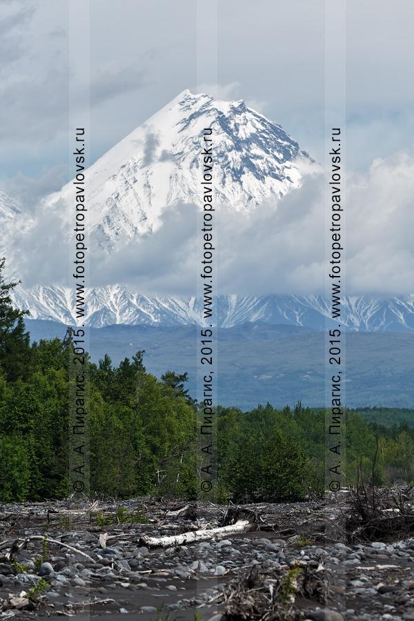 Фотография: летний вид на вулкан Камень (Kamen Volcano) в пасмурную погоду. Ключевская группа вулканов