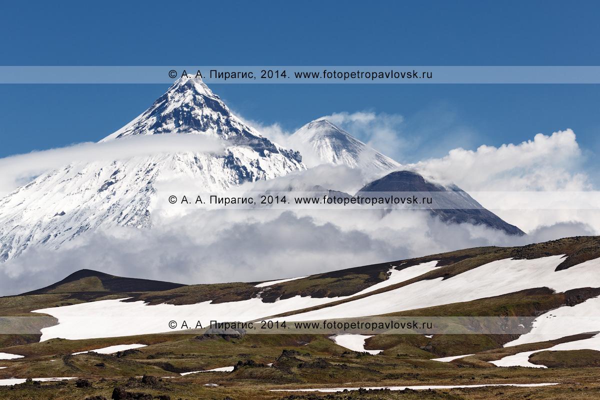Фотография: камчатский вулканический пейзаж — живописный вид на вулкан Камень, вулкан Ключевской и вулкан Безымянный. Полуостров Камчатка, Ключевская группа вулканов