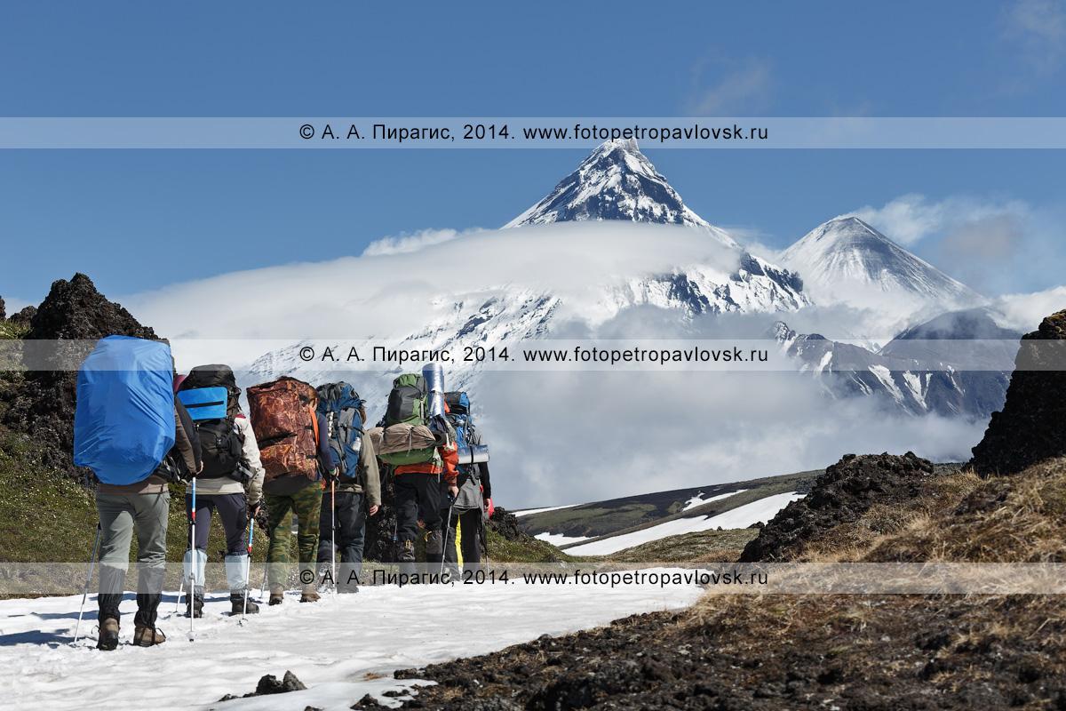 Фотография: группа туристов идет в горах на фоне вулканов Ключевской группы — вулкана Камень, вулкана Ключевского и вулкана Безымянного. Камчатка