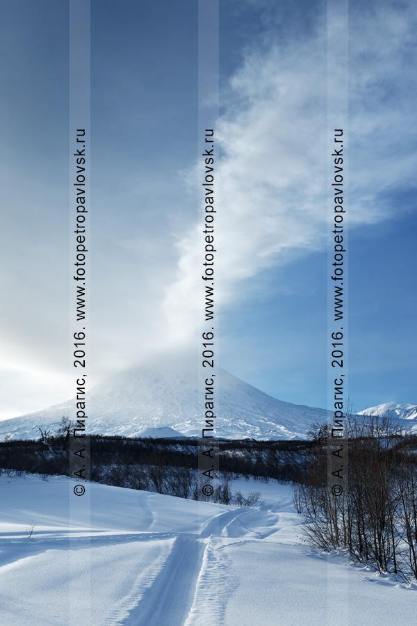 Фотография: зимний камчатский пейзаж — снегоходная шахма к действующему вулкану Ключевская сопка. Камчатский край, Ключевская группа вулканов