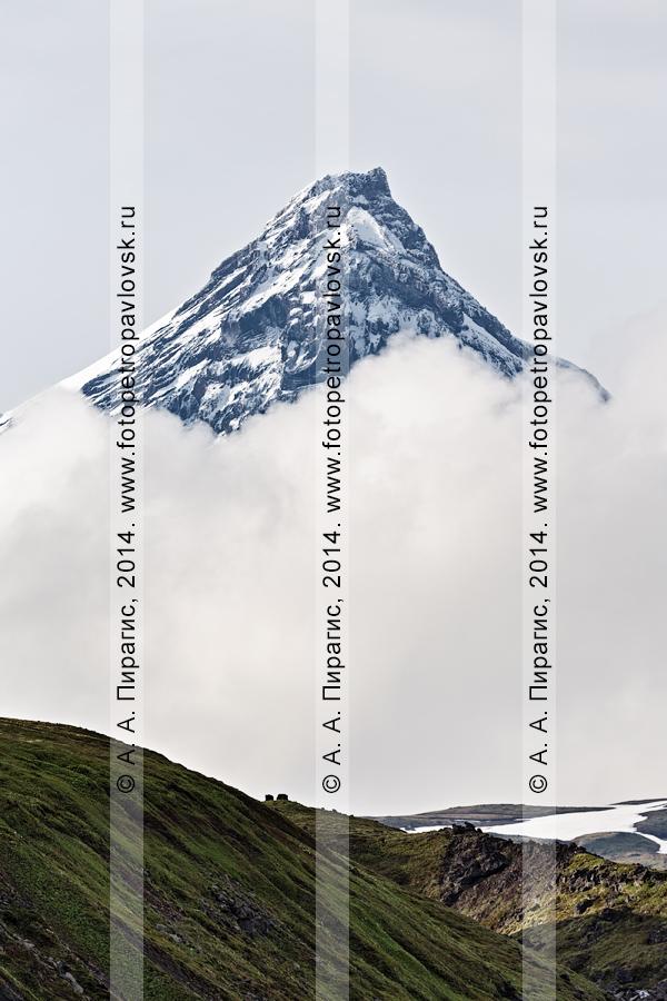 Фотография: камчатский пейзаж — живописный вид на вершину вулкана Камень (Kamen Volcano). Полуостров Камчатка, Ключевская группа вулканов