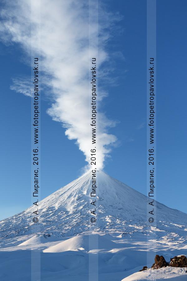 Фотография: действующий Ключевской вулкан зимой. Полуостров Камчатка