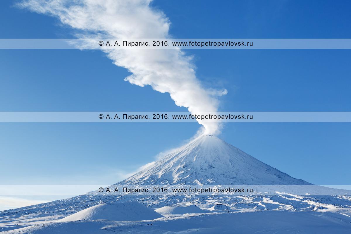 Фотография: действующий вулкан Ключевская сопка, видна сильная фумарольная активность исполина — из кратера вырывается мощный столб пара и газа. Камчатский край