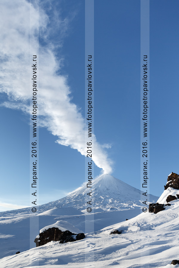 Фотография: высочайший действующий вулкан Евразии — вулкан Ключевская сопка на Камчатке