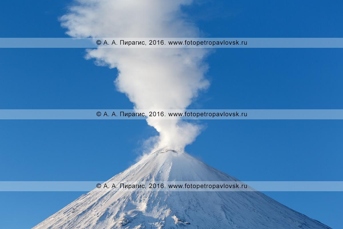 Фотография: вершина вулкана Ключевская сопка с вырывающимся из кратера мощным парогазовым столбом. Камчатка, Ключевская группа вулканов