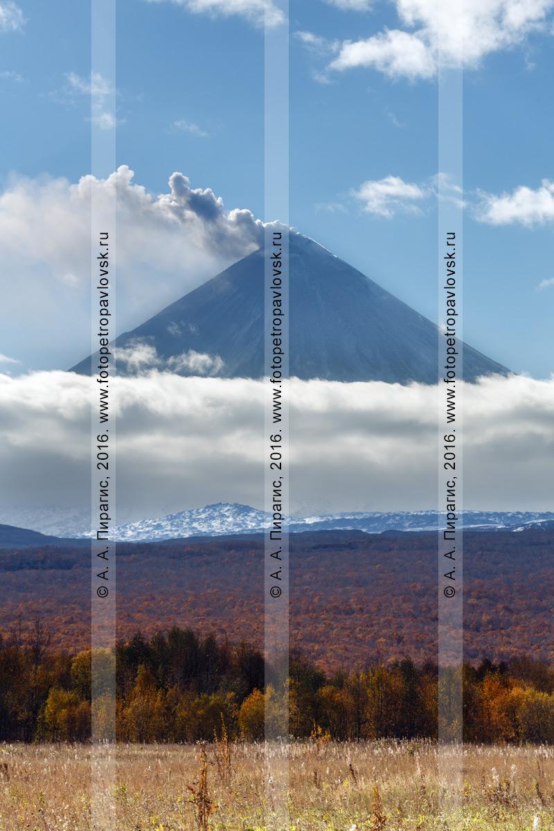Фотография: осенний вид на действующий Ключевской вулкан на Камчатке, находящийся в стадии извержения