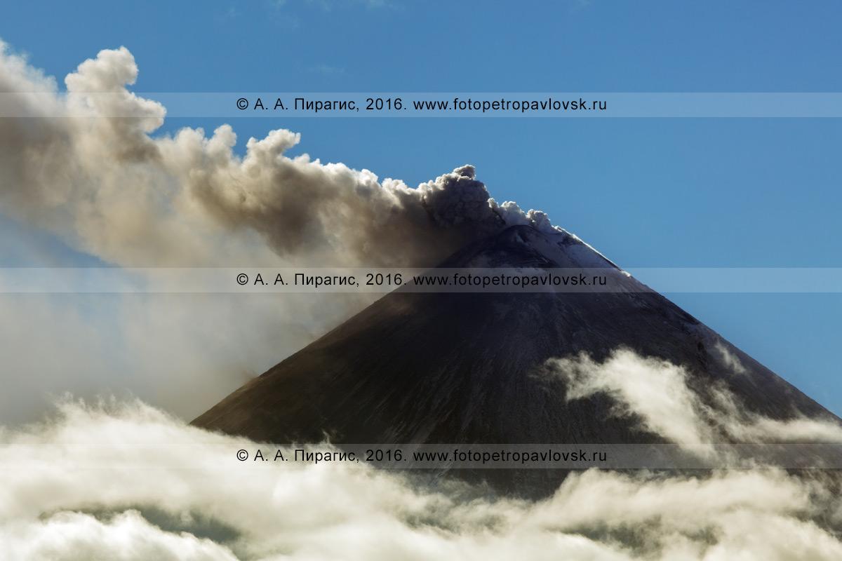 Фотография: конус извергающегося вулкана Ключевская сопка, выброс пепла, пара и газа из кратера камчатского исполина