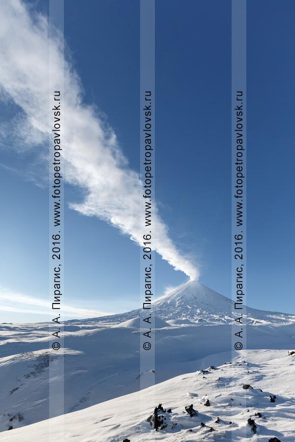 Фотография: красивый вид на действующий Ключевской вулкан (Klyuchevskoy Volcano). Полуостров Камчатка, Ключевская группа вулканов