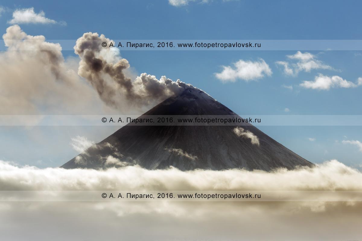 Фотография: извержение Ключевского вулкана, исполин выбрасывает пепел, газ и пар из кратера. Полуостров Камчатка