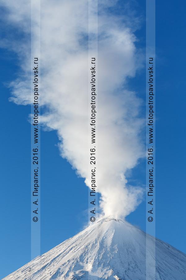 Фотография: действующий Ключевской вулкан, вид на вершину исполина, мощный столб пара и газа, вырывающийся из кратера вулкана. Камчатский край